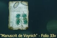 ACIV Manuscrit de Voynich Folio 33v