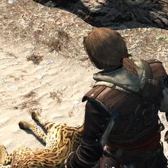 爱德华剥了山猫的皮
