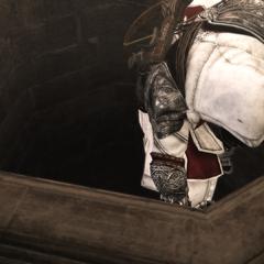 Ezio empruntant le passage secret
