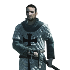 A Teutonic soldier
