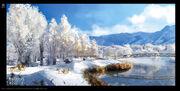 ACRG Winter Forest - Concept Art