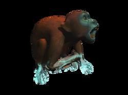 AC4DB - Red Howler Monkey
