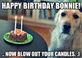 Birthday cake meme.jpg