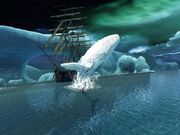 ACPirates Cold Blood the white whale