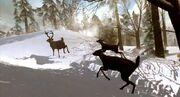 640px-Fleeing-deer