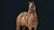 ACOD Brown Horse Phobos Skin