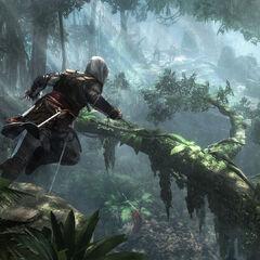 Edward freerunt door de jungle