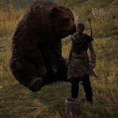 法拉达贡和她的熊
