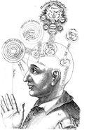 L'étude de la conscience