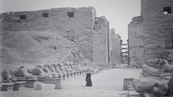 DTAE Alley with sphinxes in Karnak