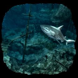AC4DB - Shipwrecks