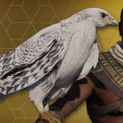 The White Senu skin awarded for completing Discovery Tour mode.