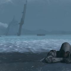 Connor sort de l'eau gelée tandis que l'<i>Octavius</i> coule