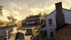 Plantation de Virginie2