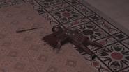 ACO Flavius mort