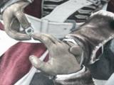 圣殿骑士戒指