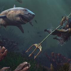 直面鲨鱼的阿利克西欧斯