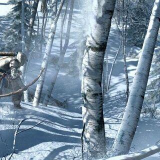 康纳持弓接近麋鹿