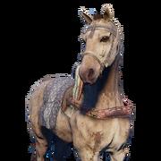 ACO The False Camel