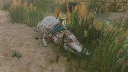 Crocodile-crocodilopolis-origins