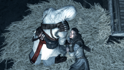 ACII Altaïr Maria