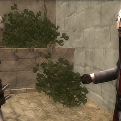 奥斯曼告诉阿泰尔圣殿骑士档案馆的事情