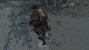 Il cacciatore di tesori 3