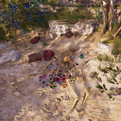 岛上的殉情骨骸