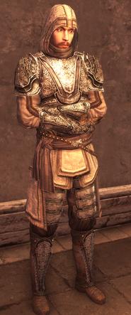 Male Assassin Armor Level 4