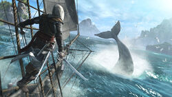 ACIV Black Flag screenshot 4 marzo 2013 3