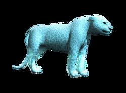 AC4 Jaguar blanc