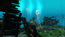 AC4 Jellyfish