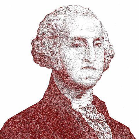 乔治·华盛顿的一幅画像