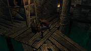 The Smuggler's Squat 3