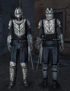 Ezio-guard-ac2