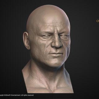 维利多维克斯的头部模型