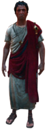 ACOCassius