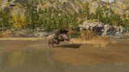 ACOD Kalydonian Boar