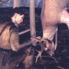 米莉安清洗猎物