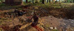 Pompeu Morte