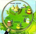 Campamentos romanos (Asterix).jpg