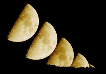 Luna v