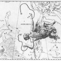 Сузір'я Андромеда за Гевелеєм (Uranographia 1690 рік)