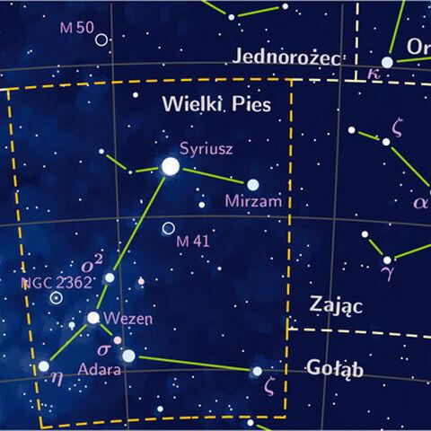 Gwiazdozbiór Wielkiego Psa według Wikipedii
