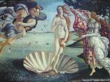 Митът за Венера