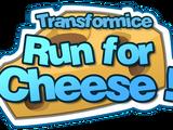 Run for Cheese