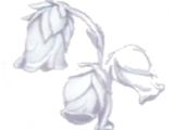 Materials (Atelier Rorona)
