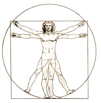 anatomical position athlepedia the athletics wiki fandom