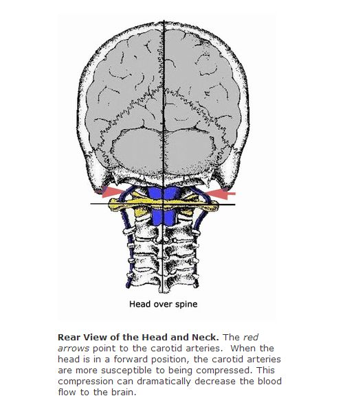 Head over Spine