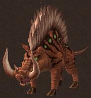 Chief Boar